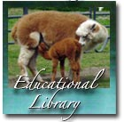 Educational Library