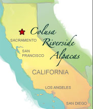 Colusa California map
